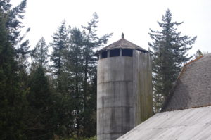 The old silo.